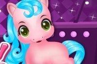 Baby Pony Umsorgen