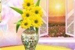 Blumen im Wohnzimmer