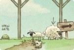 Schafe heim bringen