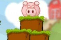 Schweinchen retten