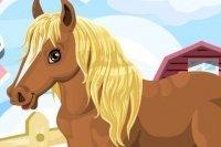 Süsses Pony