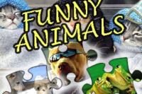 Witziges Tierpuzzle
