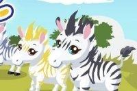 Zebra Park 2