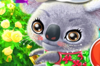Happy Koala